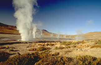 Les geysers de Tatio dans le désert d'Atacama