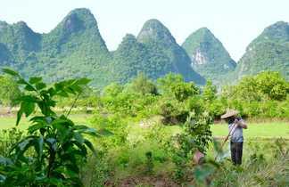 Les pics karstiques de Yangshuo en Chine