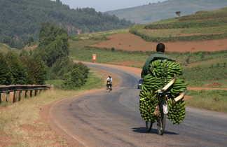 Livreur de bananes à vélo, Koug Durur