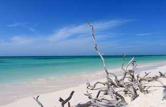 Magnifique plage sauvage de Cayo Jutias