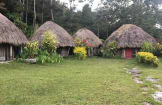 Maisons traditionnelles, Vallée de Baliem, Papouasie, Indonésie