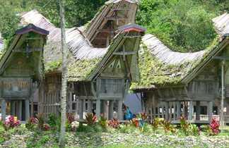 Maison Pays Toraja