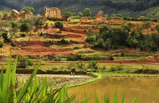 Maisons Betsileo dans les Hautes Terres