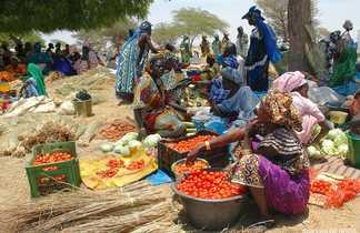 Marché de brousse au Sénégal