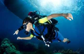 Même les plus jeunes peuvent découvrir la plongée sous-marine