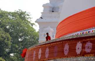 Moine sur l'immense stupa d'Anuradhapura au Sri Lanka