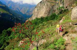 Montagne du Drakensberg dans le Royal Natal National Park