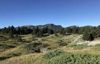 Montagne du massif du Vercors