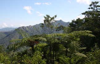 montagnes verdoyantes de la Sierra Maestra