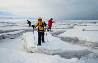 Nos voyageur effectuant leur premiers en rauquette pas sur la banquise, étendue de mer gelée