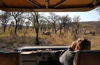 Observation d'un rhinocéros blanc d'un véhicule safari en Afrique du sud