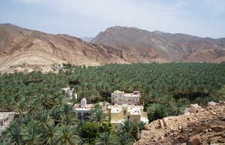 Palmeraie de Birqat al Mows, Oman