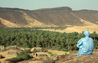 Palmeraie de Toungad, Mauritanie