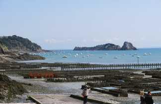 Vue sur les parcs à huîtres de Cancale