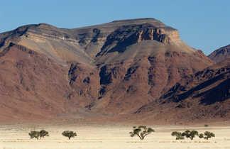 Paysage désertique et minéral du Namib Naukluft en Namibie