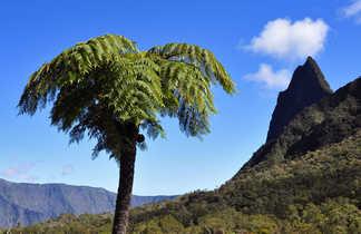 Paysage randonnée de La Nouvelle à Hellbourg, la Réunion
