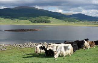 Paysages de la région des 8 lacs