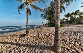 Balançoire entre 2 cocotiers sur une plage de Phu Quoc