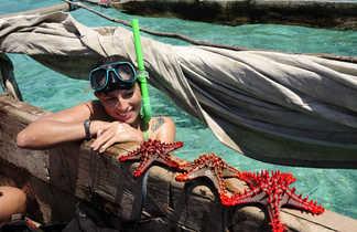 Plongeuse admirant une étoile de mer à Zanzibar