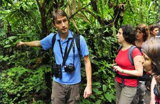 rando en foret tropicale