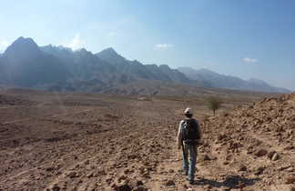 Rando Wadi Jordanie