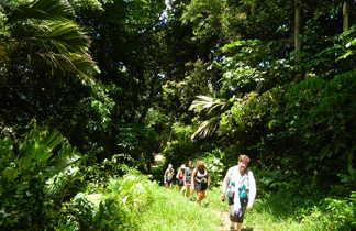 Randonnée aux Seychelles