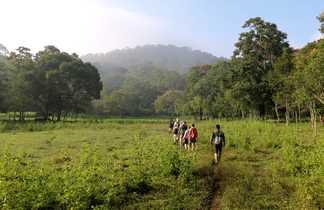 randonnée Peryar, thekady, randonnée Kerela