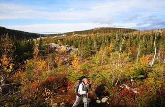 Randonnée dans les forêts du Québec l'automne