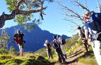 Randonnée de La Nouvelle à Hellbourg, la Réunion