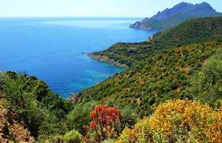 Randonnée en Corse, vers Girolata