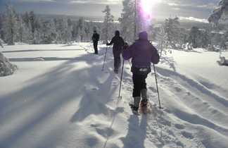 Randonnée en raquettes en Finlande