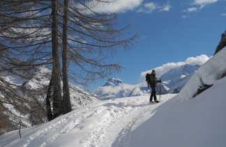 Randonnée en raquettes sur les sentiers du Queyras, Alpes du sud
