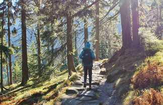Randonneur sur un chemin des monts des Géants