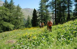Randonneurs dans le Queyras, Alpes du sud