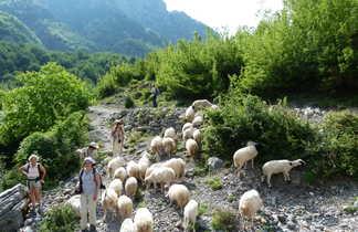 rencontres avec la population locale, dans la vallée de Theth
