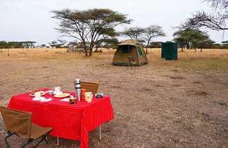 Repas simple mais quel luxe au beau milieu de la savane !