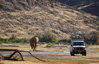 Safari à la recherche des éléphants habitués à la vie en milieu désertique en Namibie