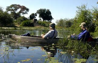 Safari éléphants en barque Delta Okavango