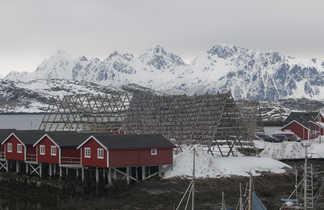 Séchoirs à morue dans les îles Lofoten