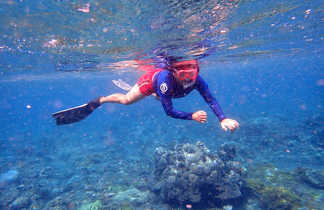 Snorkeling a Amed