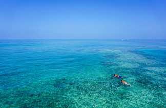 Snorkeling dans les Caraïbes