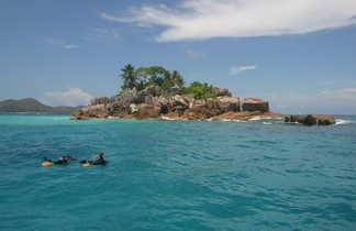 Sortie snorkeling aux Seychelles