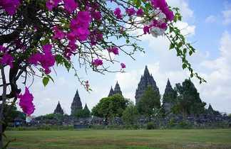 Temple de Prambanan à Java