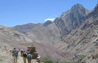 trek Markha, trek facile Ladakh