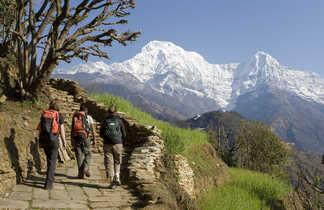 Trekkeurs dans les balcons des Annapurnas, face à l'Annapurna Sud
