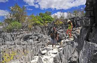 Rando dans les Tsingys Gris du Nord de Mada