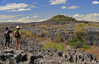 Tsingys Gris du Nord de Mada