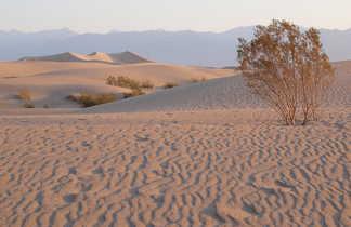 Vallée de la mort, ouest américain