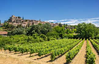 Vélo randonnée route des vins Luberon