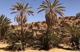 Ville caravanière de Ouadane en Mauritanie